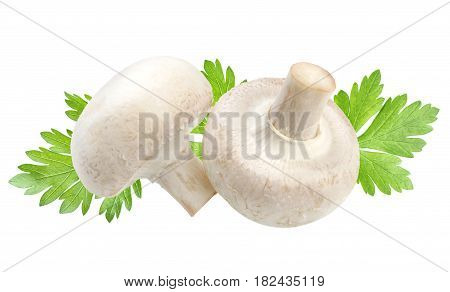 Two champignon mushrooms and parsley leaves isolated on white background with clipping path