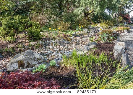 A view of a dry stream bed and flowers in Spring. Location is Seatac Washington.