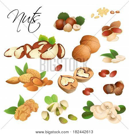 Assorted from different nuts on white background