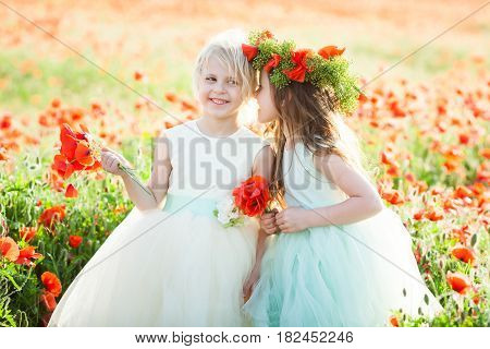 little girl model, childhood, fashion, summer concept - beautiful smiling girlfriends talking in a field of poppies, they gather poppy, elegant white and blue dresses and wreaths on the heads