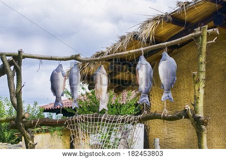 Photo of Dryed Fish Over Vintage Rural Background