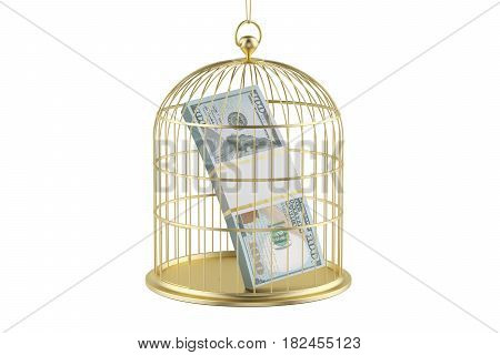 Birdcage with dollar bill inside 3D rendering isolated on white background