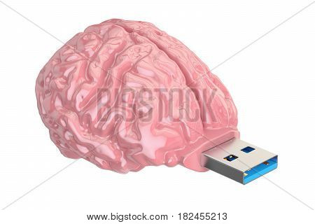 Brain USB flash drive knowledge concept. 3D illustration isolated on white background