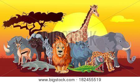 Cartoon african fauna template with different wild animals on sunset savannah landscape vector illustration
