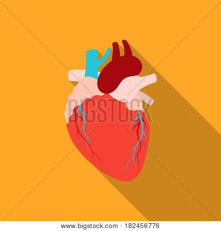 Heart icon in flat style isolated on white background. Organs symbol vector illustration.