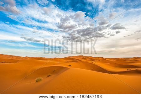 Sand dunes of Erg Chebbi Morocco Northern Africa