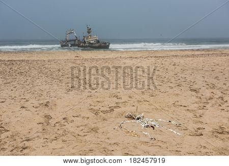 Shipwreck on the beach Skeleton Coast Namibia