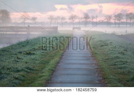 biking road on Dutch farmland in morning