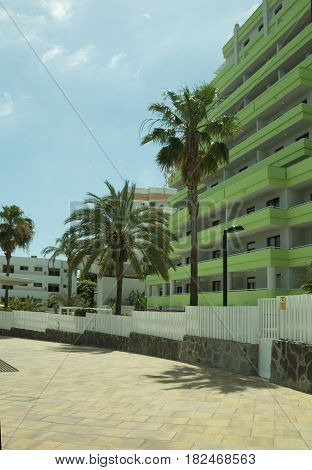 The palm tree and building of hotels, Gran Canaria Spain