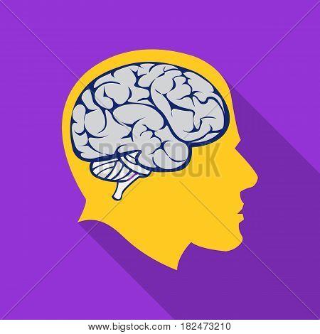 Brain icon flat. Single education icon from the big school, university flat.