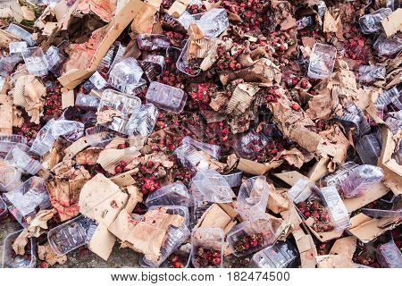 Rotten garden strawberries on the landfill. Plastic containers and cardboard boxes. Pile of garbage. poster