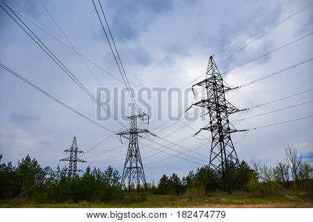 High-voltage Supports Stand In The Middle Of A Coniferous Forest.