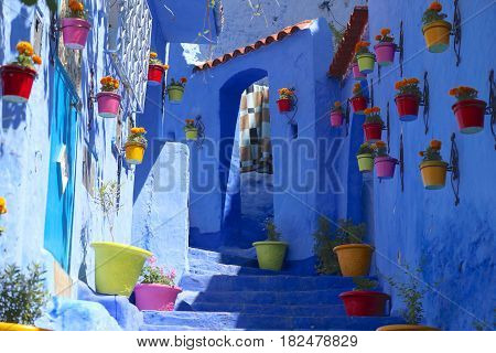 Colorful pots of flowers adorn blue-painted courtyard