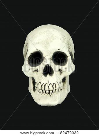Human skull isolated on black background .
