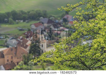 Nice sunny spring near Klentnice village in Palava area
