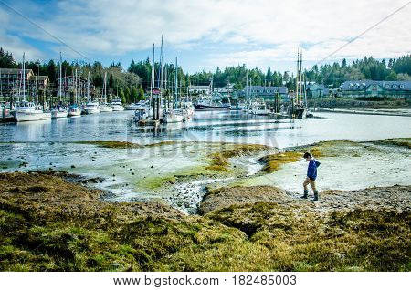 UCLUELET - BRITISH COLUMBIA, APRIL 10, 2017 Young boy walks along the tidal flats of the fishing village on the west coast of Vancouver Island.