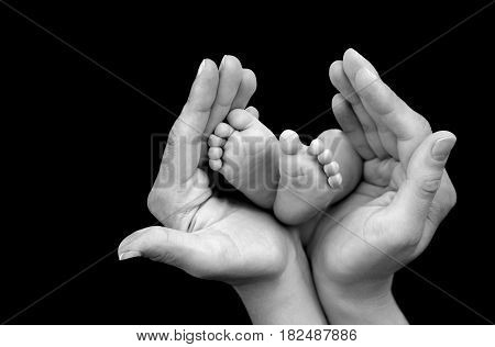 Baby feet in hands close up image