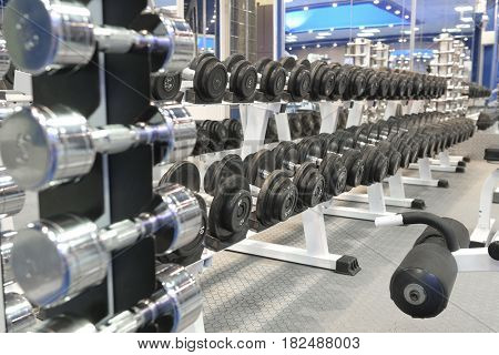 barbells on a stand