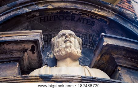 A bust of Hippocrates in the city  Amsterdam