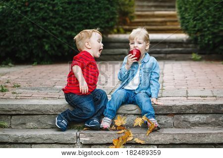 Group portrait of two white Caucasian cute adorable funny children toddlers sitting together sharing eating apple food love friendship childhood concept best friends forever