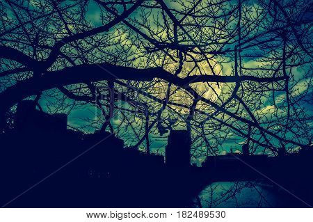 Silhouette of dry trees night sky and full moon over green nature background. View through the branches to cityscape at nighttime. Cross process and vintage tone. The moon were NOT furnished by NASA.