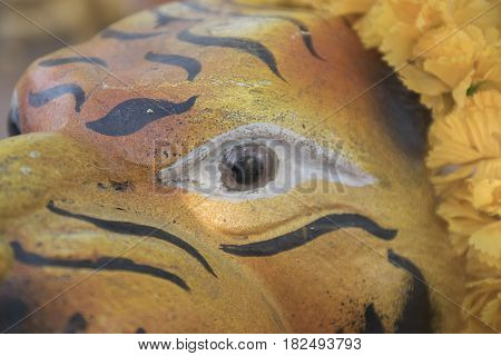 Eye of the tiger statue abstract background.