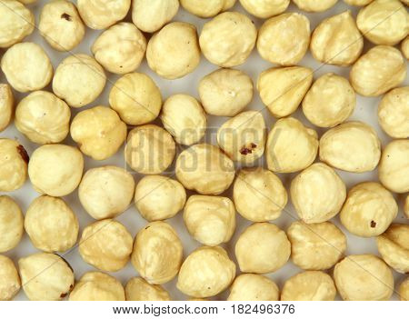 Delicious hazelnuts , on white background .