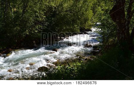 Nature reserve teberda Karachayevo-Cherkessia Russia. Photo taken on: July 27 Saturday 2013