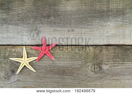 Starfishes on old plank,close up image .
