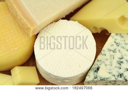 Yummy various cheeses , close up image.
