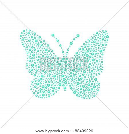 Butterfly in turquoise design on white background