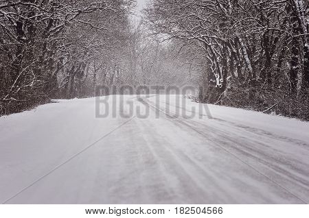 beautiful winter landscape with road and snow-covered trees