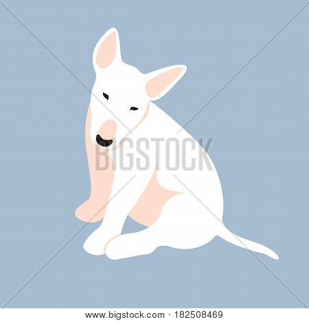 Bull Terrier puppy vector illustration style Flat side