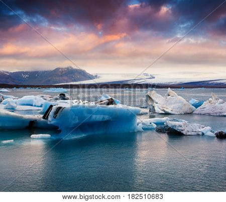 Floating of blue icebergs in Jokulsarlon glacial lagoon. Colorful sunset in Vatnajokull National Park southeast Iceland Europe. Artistic style post processed photo.