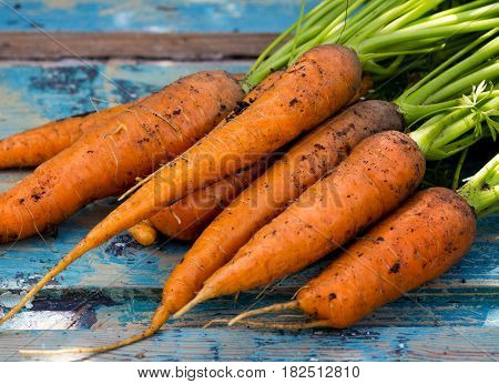 carrots lying on a vintage wooden background