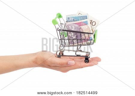 Polish zloty in the shopping pushcart on woman's palm isolated on white