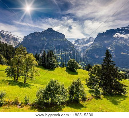 Colorful morning view of Grindelwald village valley from cableway. Wetterhorn mountain located west of Innertkirchen in the Bernese Oberland Alps. Switzerland Europe.