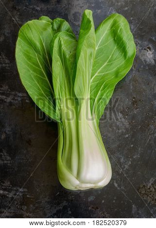 Bok choy or pak choi on vintage black background it is a type of Chinese cabbage(Qing geng cai).It is one of the healthiest vegetable and popular superfood.