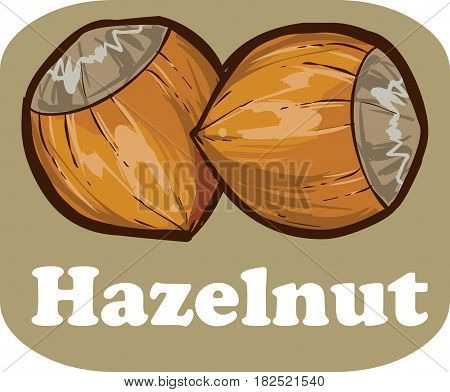 Hazelnut kernel with on light brown background vector illustration