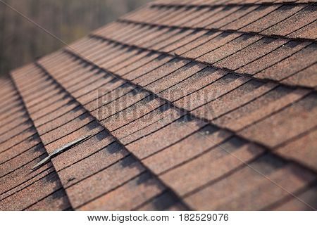 Close up of new asphalt shingles on the roof
