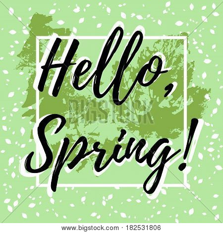 Welcoming card with hand written lettering Hello Spring with falling leaves out of frame and prints of spring leaves on pale green background. Vector illustration