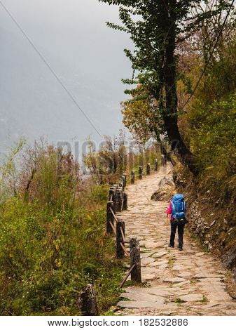 A woman walks on a stone paved path downhill in the Annapurna region with a large blue backpack on her back Nepal.
