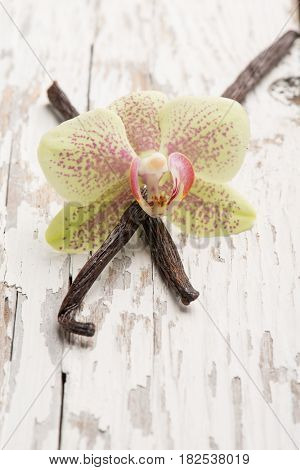 vanilla stick with flower