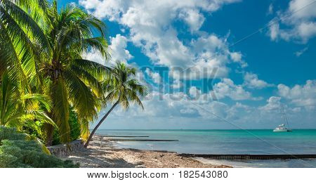 Tropical beach with a catamaran on the Caribbean sea at Rum Point In Cayman Islands