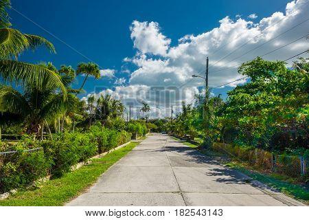 Cayman Islands street border by abundant tropical vegetation
