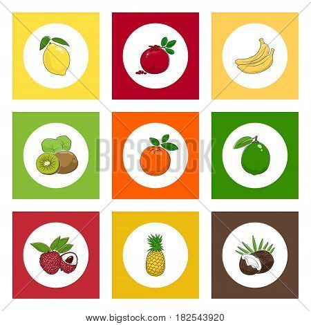 White Icons Citrus Tropical Fruits on Colored Background ,Lichee and Coconut, Kiwifruit and Pomegranate , Pineapple and Banana, Lemon and Orange, Lime, Vector Illustration