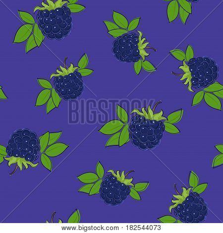 Seamless Pattern of Blackberry, Fruit Berry on Purple Background, Vector Illustration
