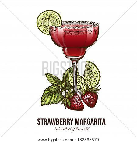 Strawberry Margarita cocktail with berries and mint leaves, vector illustration, colored hand drawn sketch