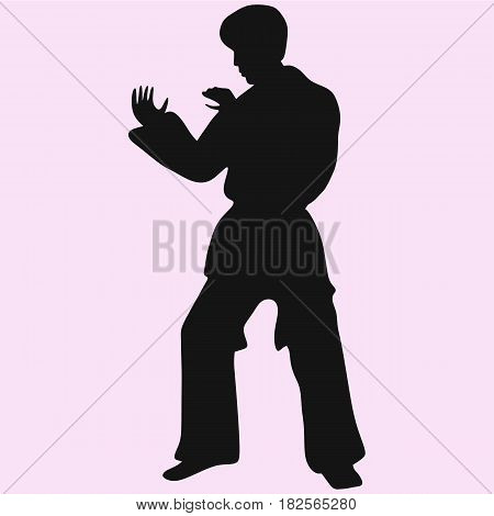 karate man vector silhouette isolated on background
