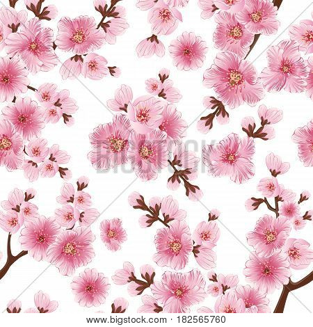Vector sakura flower seamless pattern element. Elegant cherry blossom texture for backgrounds. Classical luxury old fashioned floral ornament, seamless texture for wallpapers, textile, wrapping.